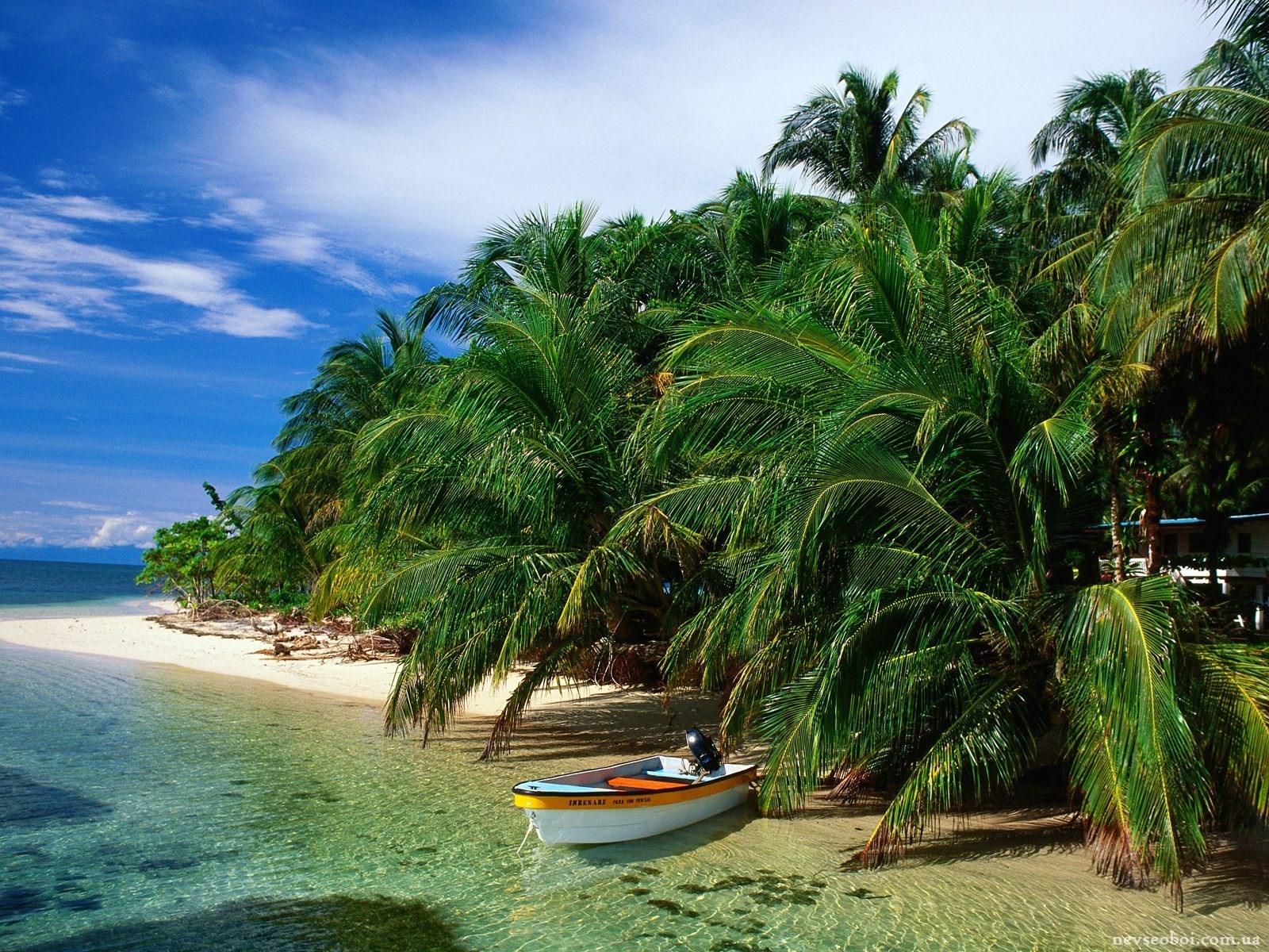 Paquetes a Bocas del Toro