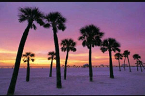 Clearwater, Estados Unidos