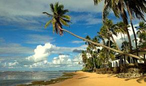 Praia do Forte, Brasil